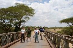 Hipopótamos Masai Mara
